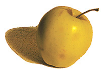 eudmon-apple.jpg