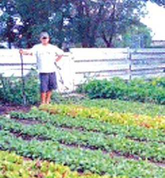 urbanfarm.jpg