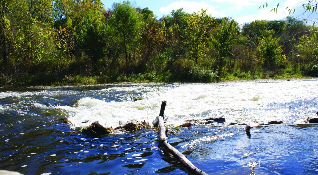 """Rapid"" Water Adds Oxygen, photo by Mikkie Moore"