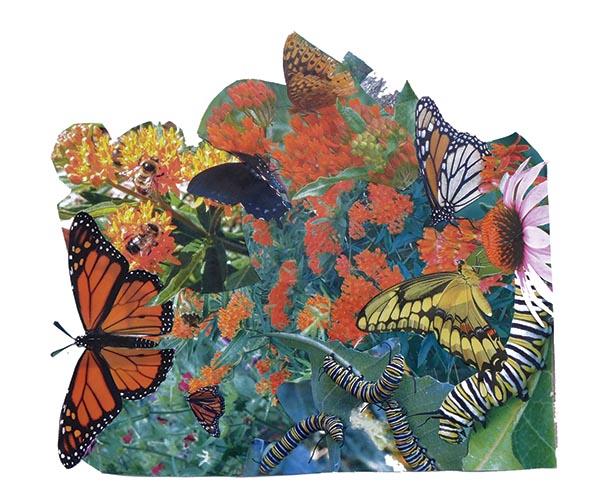 flowersbeesbttrfly web