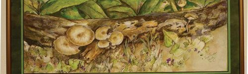 Tonia Kountz - Mushrooms Riverwest Jazz Gallery Creative Expressions II